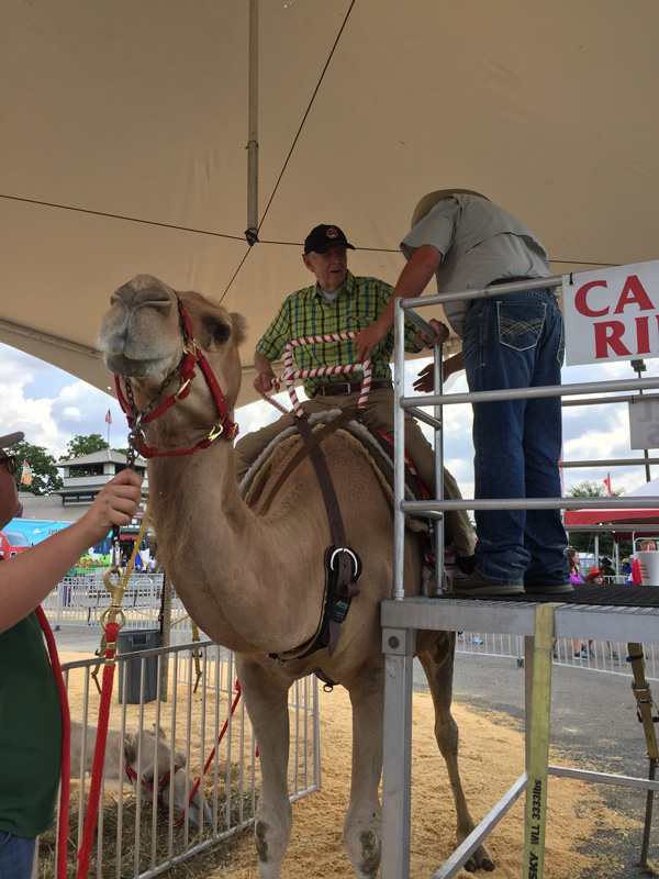 Bev Shaffer - Do Not Let What You Cannot Do - John Mounting Camel at Ohio State Fair