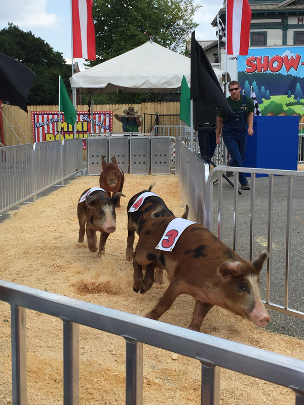 Bev Shaffer - Do Not Let What You Cannot Do - Ohio State Fair Pig Races