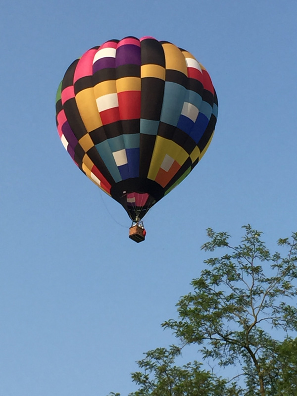 Bev Shaffer - When It's Been A Stressful Week - Black Checked Hot Air Balloon