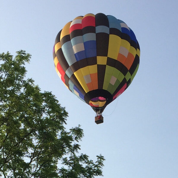 Bev Shaffer - When It's Been a Stressful Week -Multi-Color Hot Air Balloon over Trees